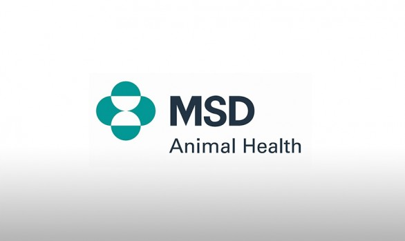 MSD - Animal Health